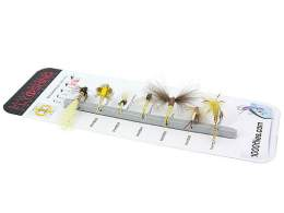 SET MOUCHES - PHY Raspini -  selon familles insectes