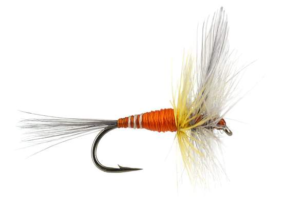 Devaux Orange Winged